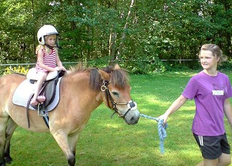 Ponnyridning på Böda Rivieras Camping